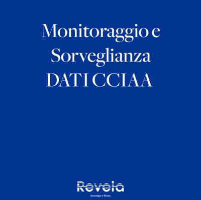 Monitoraggio e Sorveglianza Dati CCIAA