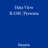 Data View Basic Persona