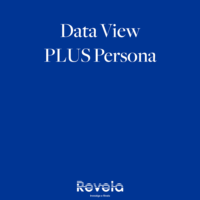 Data View Plus Persona