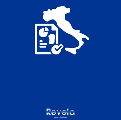 REPORTISTICA ED ELABORAZIONE DATI ITALIA