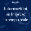 Informazioni Commerciali: Revela CREDIT SMART